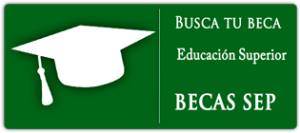 Requisito sep becas 2016